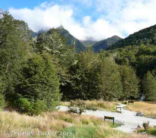 Eastern beginning of the Routeburn Track
