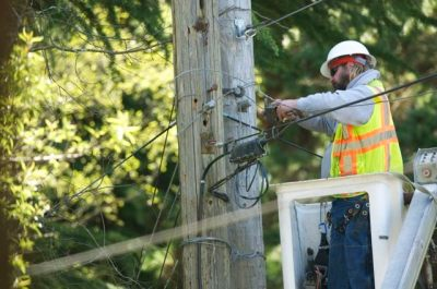Utility worker on nest pole