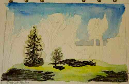 """""""Dragonfly Field,"""" Lincoln Park, West Seattle (unfinished)"""