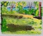 Dragonfly Field sans glasses (Used iPad app called Art Set)