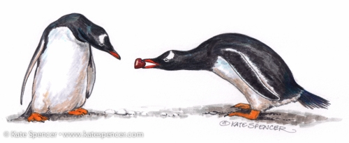 Valentine's Day gift in the Deep South. Gentoo Penguins, painted by Kate Spencer (katespencer.com)